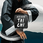 Guided Tai Chi VR Review